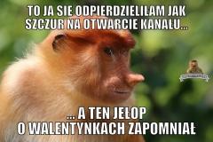 janusz-0070