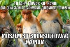 janusz-0072